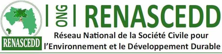 renascedd guinée