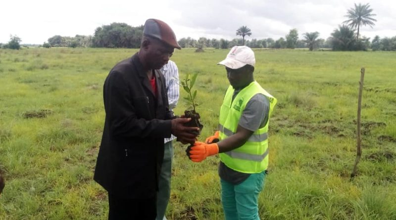 Reboisement 2021 : PLUS DE 100 000 PLANTS MIS EN TERRE…
